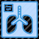 anatomy, lungs, medical, organ, ray, x