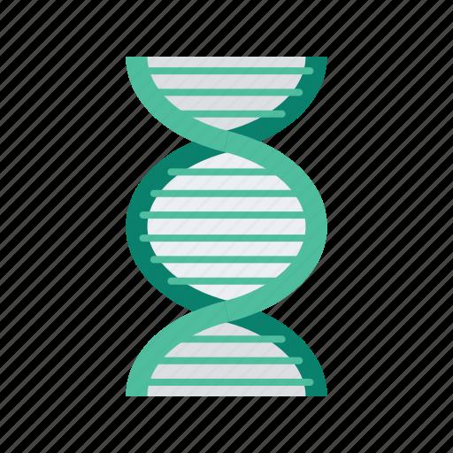 Dna, health, healthcare, medical, medicine icon - Download on Iconfinder