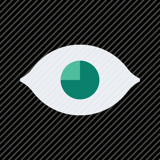Eye, health, healthcare, medical, medicine icon - Download on Iconfinder