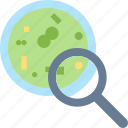 bacteria, magnifier, micro, organism, research, science icon