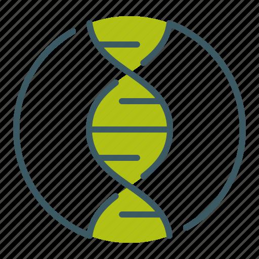 circle, dna, genetics, helix, science icon