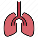 heart, lungs, medical
