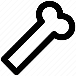 bone, dog bone, dog food, dog treat, human bone icon
