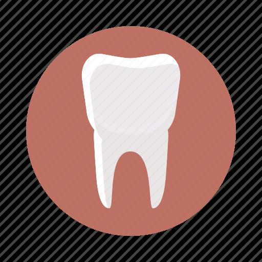 care, cartoon, clean, dental, dentist, medical, tooth icon