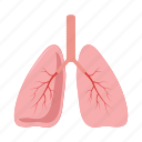 anatomy, cartoon, health, human, lung, medical, organ icon