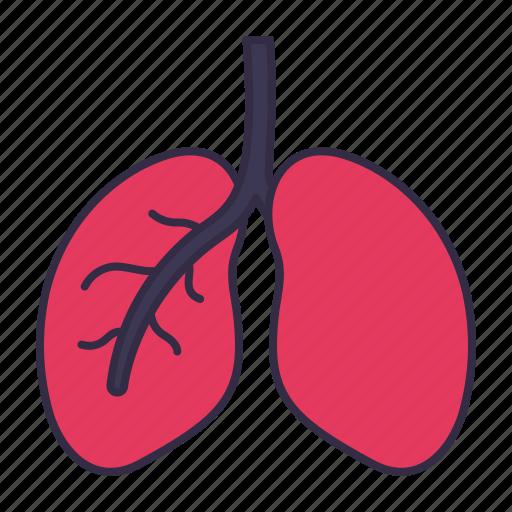 anatomy, body, breath, healthcare, lungs, medical, organ icon