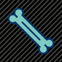 bone, dog, orthopedics, orthopedist icon