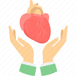 cardiology, care, diagnose, hands, heart, heart care, love icon