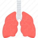 lungs, anatomy, cancer, organ, respiratory, system, ventilatory icon