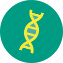 medical, dna, genetic, helix, spiral, strand icon