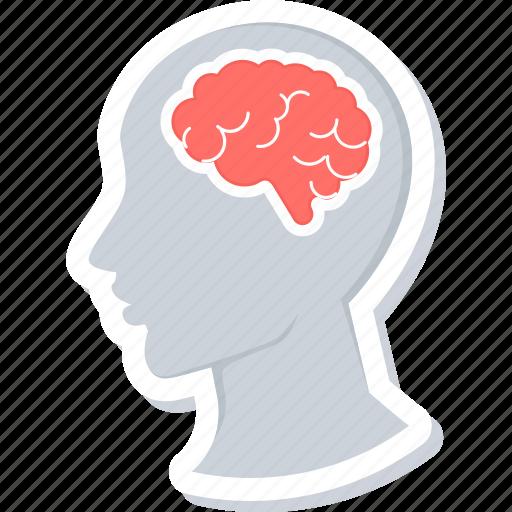 brain, human, organ icon