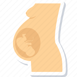 fetus, maternity, obstetrics, pregnancy, pregnant, ultrasonography, ultrasound icon
