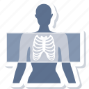 anatomy, bones, lungs, organ, rays, skeleton, xray icon