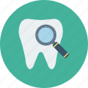 dental, dentist, find, search, stomatology, tooth icon icon