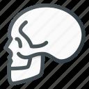 anathomy, bone, death, head, skull icon