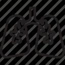 anatomy, breath, human, lungs, pulmonology, user