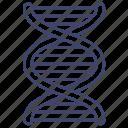 dna, gene, genetics, science icon