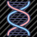 dna, gene, genetics, science