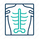 bone, radiology, xray icon