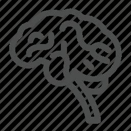 body, brains, doctor, head, hospital, nerves, organ icon