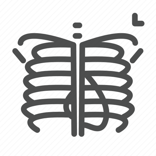 bone, bones, heart, human, ribs, skeleton, xray icon