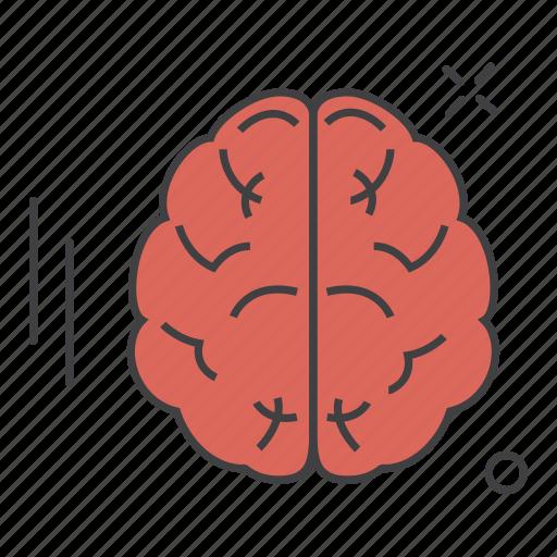 aid, brain, care, health, medical, science icon