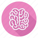 brain, drug, healthcare, hospital, medication, medicine, pharmaceutical icon