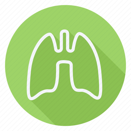drug, healthcare, hospital, lungs, medication, medicine, pharmaceutical icon