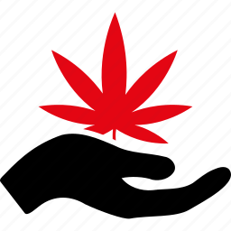 dealer, ecology, grass, leaf, nature, plant, spring icon