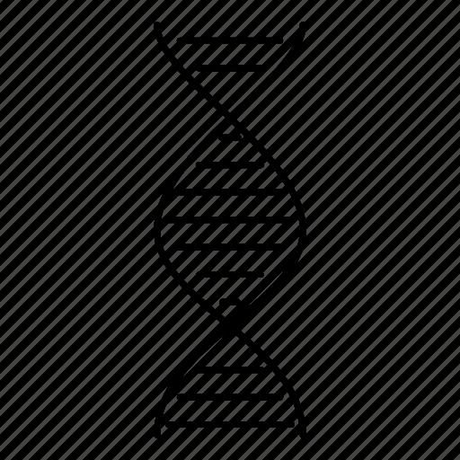 biology, dna, genealogy, genetics, helix, science icon