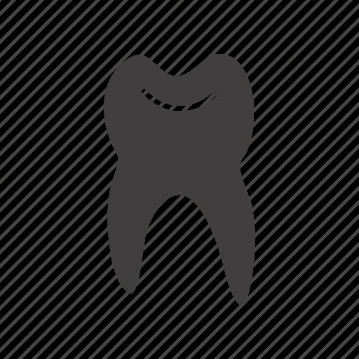dent, dental, dentist, odonti, stomatology, tooth icon