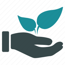 eco, ecology, hand, offer, plant, supplement icon