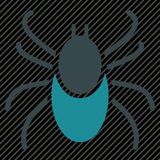 acarus, bedbug, beetle, bug, insect, mite, tick icon