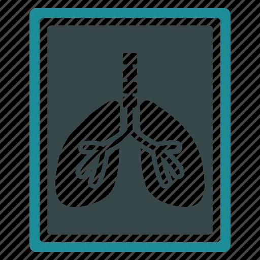 anatomy, diagnostic, fluorography, radiology, radioscopy, skeleton, xray icon