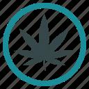 cannabis, hemp, marihuana, marijuana, weed, ganja, pot icon