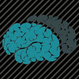brain, brains, human, mind, neuro, organ, think icon