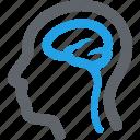 brain, head, neurology