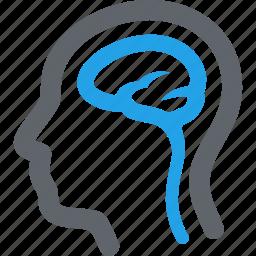 brain, head, neurology icon