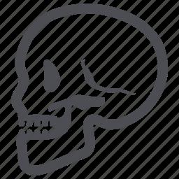 osteology, skeleton, skull icon
