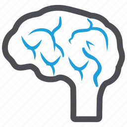 brain, head, intellectual, mind, thinking icon