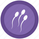 reproduction, sperm, sperms, sperms cells icon