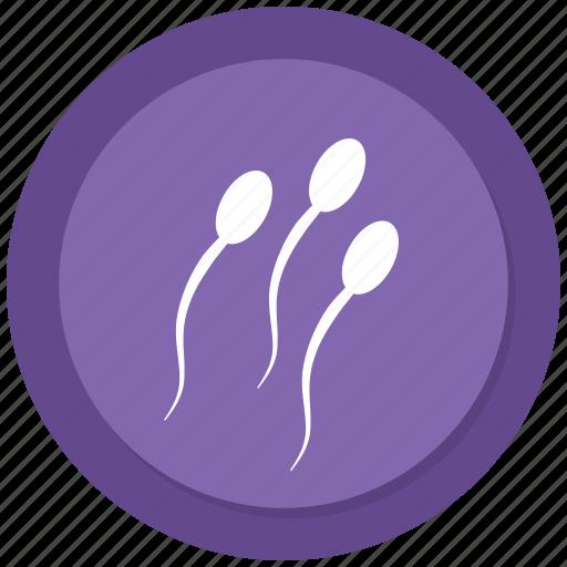 reproduction, sperm, sperms, sperms cells icon