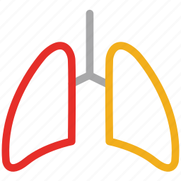 anatomy, breathe, lungs, medical, respiratory icon