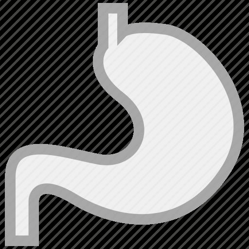 gastronintestinal, internal medicine, organ, stomach icon