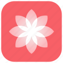 app, beauty, flower, gallery, images, retouching, ui icon