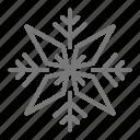 flake, ice, precipitation, snow, star, water, winter icon