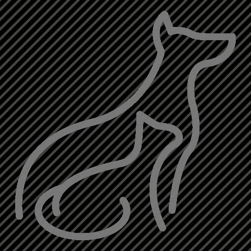 cat, dog, profile, vet icon
