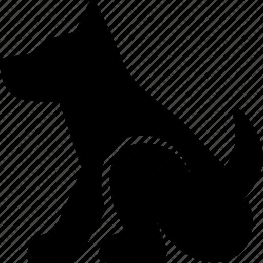 animal, dog, domestic, pet icon