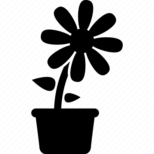 daisy, flower, flowerpot, plant, pot, potted icon