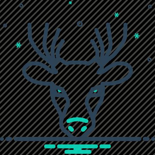 antler, deer, forest, herbivores animal, hunting, mammal, reindeer icon